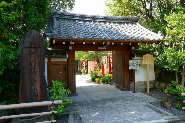 京都府法音院の山門