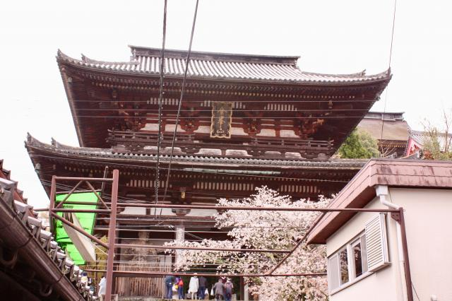奈良県金峯山寺の本殿