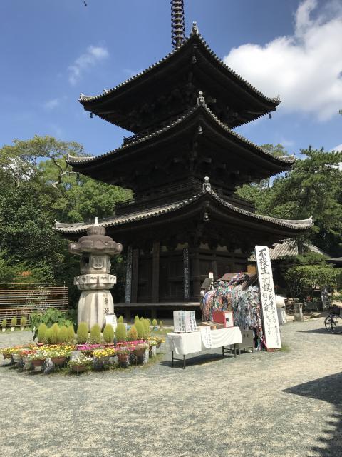 愛媛県石手寺の塔