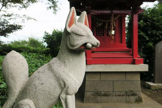埼玉県下組八幡稲荷神社の狛犬