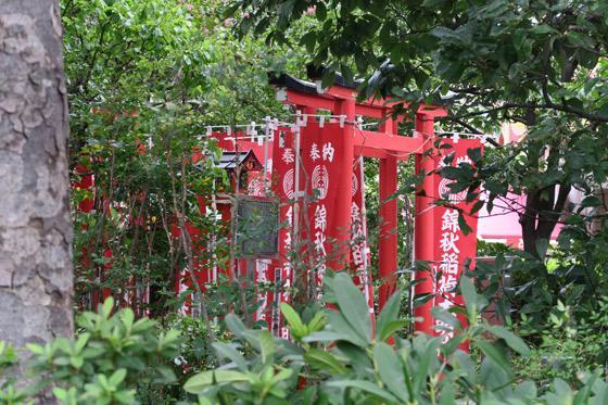 東京都錦秋稲荷大明神の鳥居
