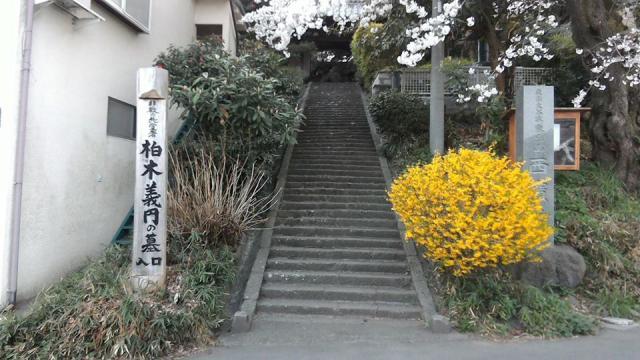 群馬県西広寺の写真