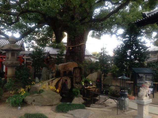 法楽寺の庭園