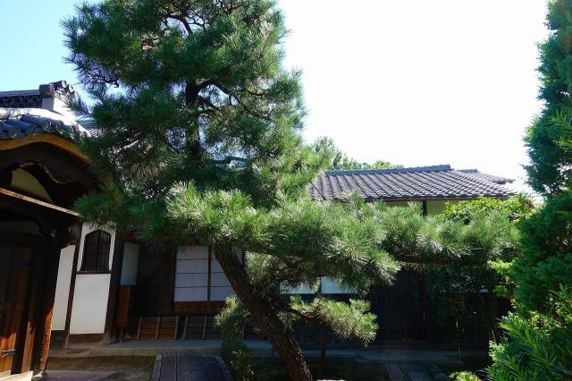 京都府退耕庵の本殿