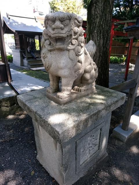 千勝浅間神社の狛犬