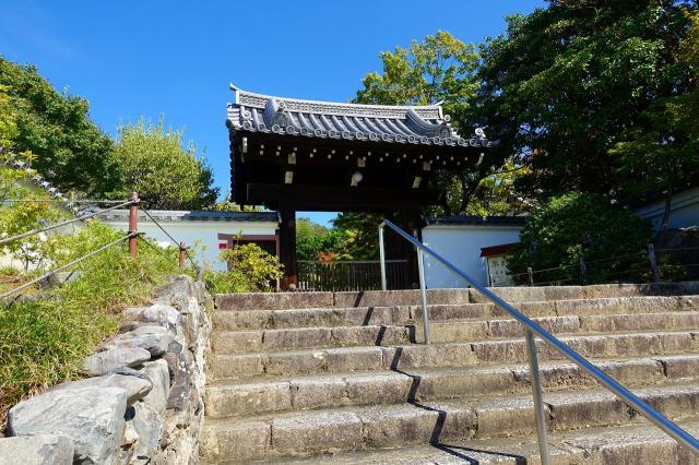 栗棘庵の山門