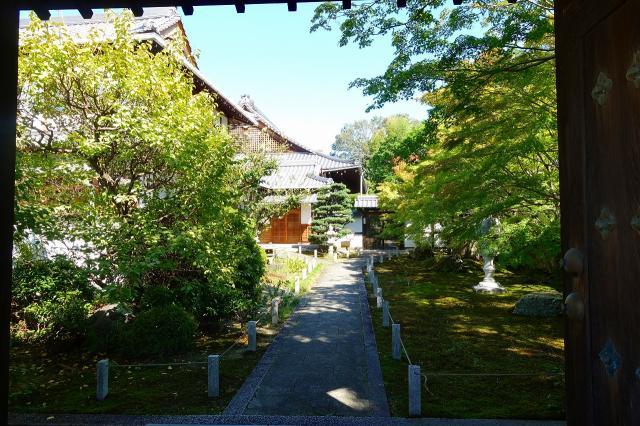 栗棘庵の庭園