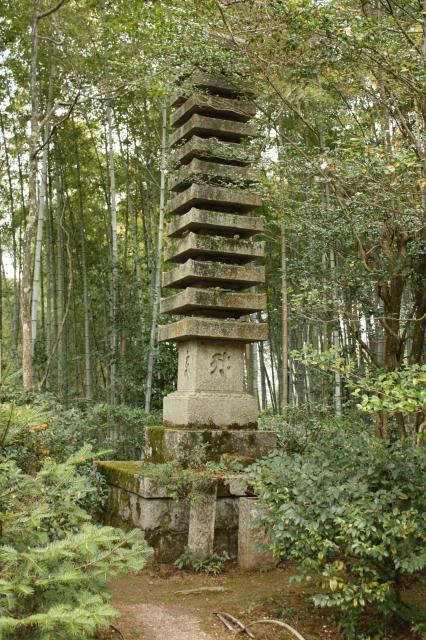 滝口寺の塔