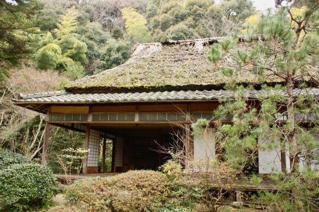 滝口寺の本殿
