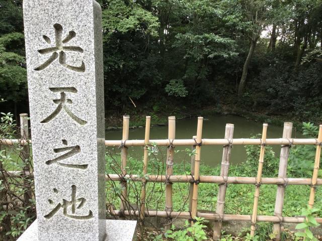 鷲宮神社(埼玉県鷲宮駅) - 庭園の写真