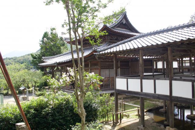福井県西福寺の写真