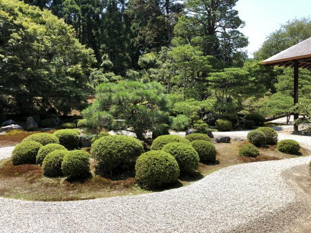 曼殊院門跡の庭園