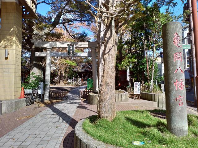 亀岡八幡宮の建物その他