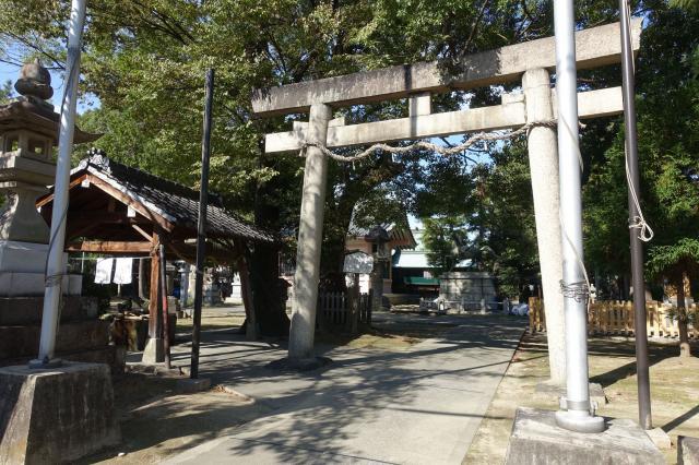 愛知県大神神社の鳥居