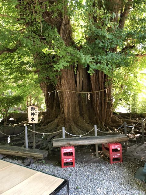 山寺日枝神社の建物その他