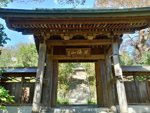 神奈川県新善光寺の山門