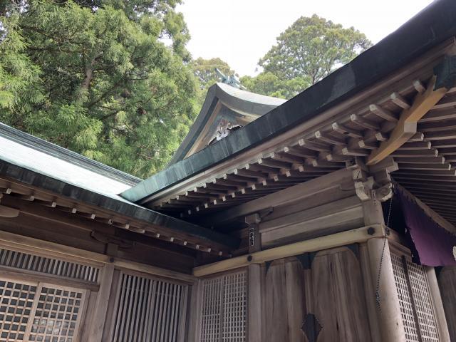 度津神社の本殿