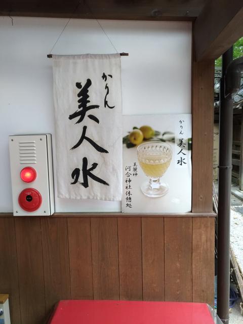 賀茂御祖神社(下鴨神社)の近くの神社お寺 河合神社