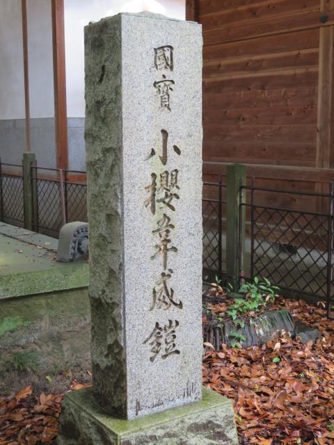山梨県菅田天神社の建物その他
