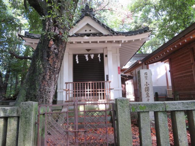 山梨県菅田天神社の本殿