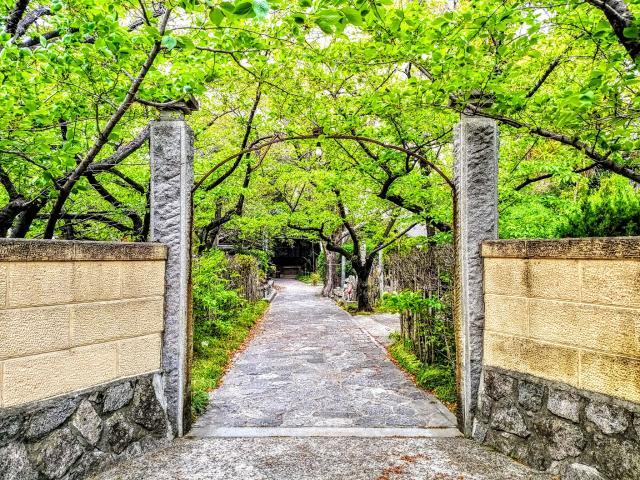 萬松山 龍台院の山門