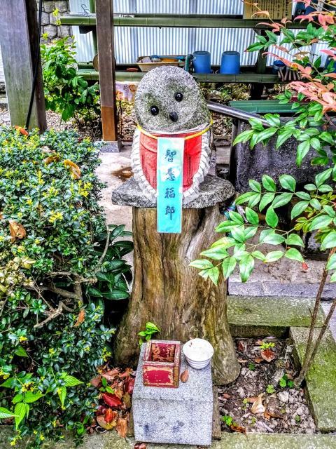 萬松山 龍台院の狛犬