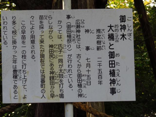 廣瀬神社の歴史