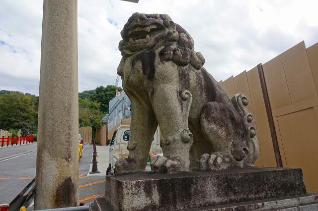 京都霊山護國神社の狛犬