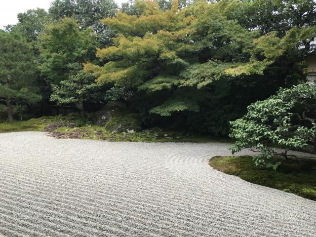 圓徳院(高台寺塔頭)の庭園