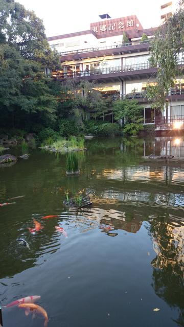 東郷神社の庭園
