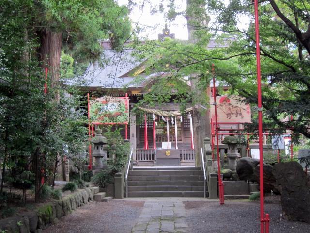 群馬県渋川八幡宮の本殿