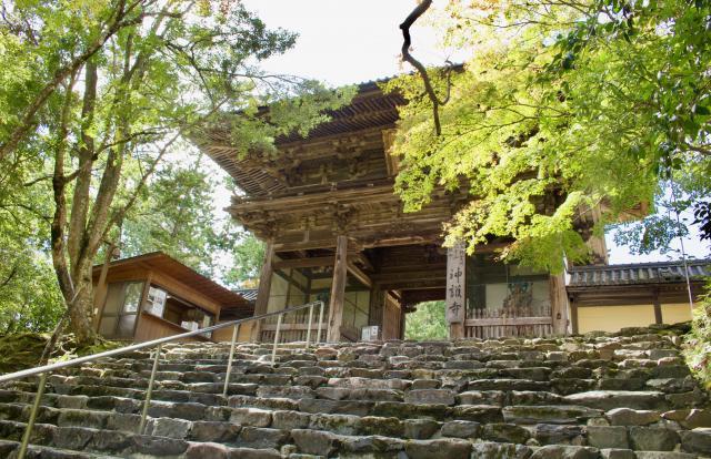 京都府神護寺の山門