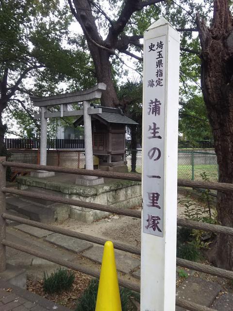 愛宕神社(蒲生一里塚)(埼玉県新田駅) - その他建物の写真