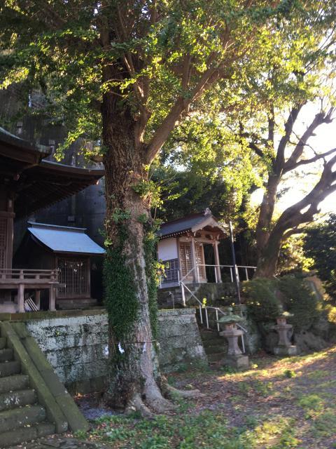 静岡県阿治古神社の写真