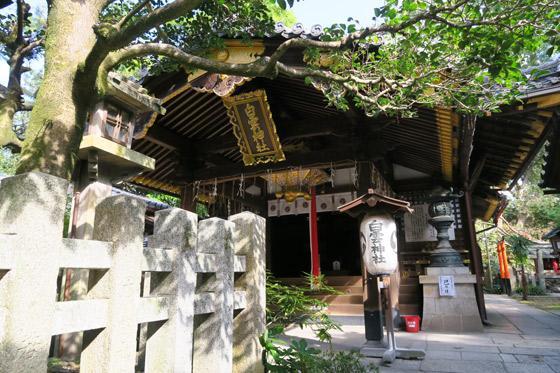 京都府白雲神社の本殿