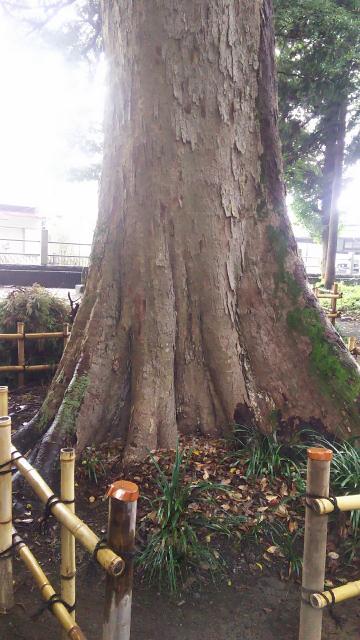 神奈川県三嶋神社の建物その他