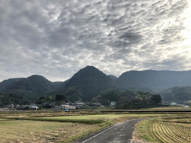 鹿児島県止上神社の周辺