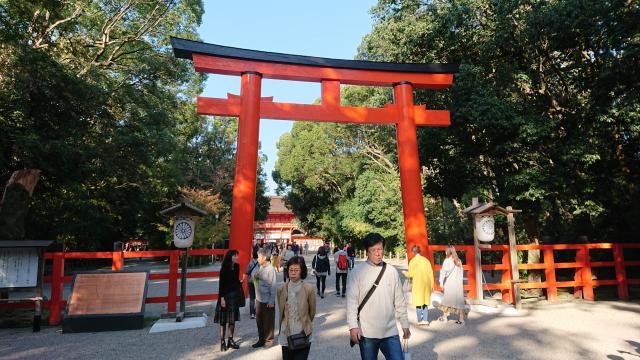 京都府賀茂御祖神社(下鴨神社)の鳥居