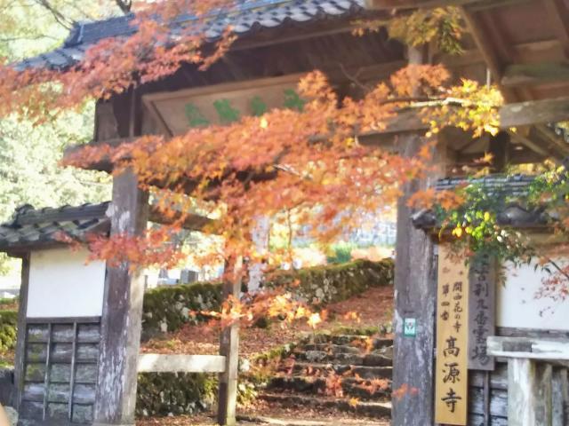 兵庫県高源寺の本殿