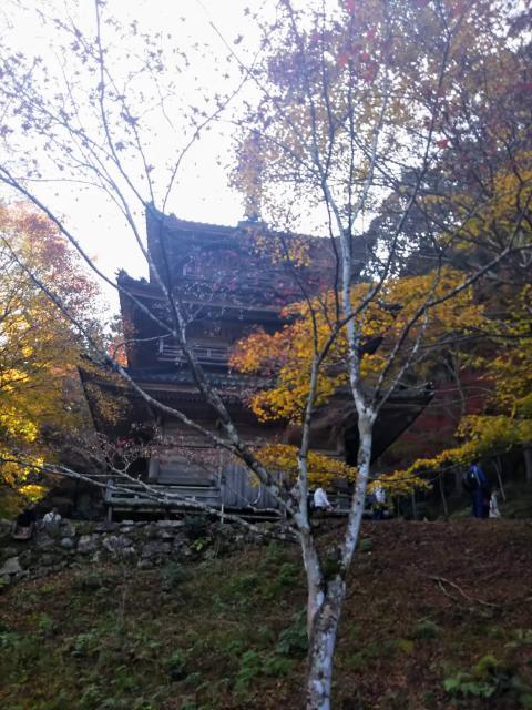 兵庫県高源寺の写真