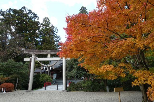 富山県高瀬神社の鳥居