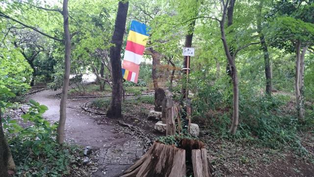 埼玉県興禅院の庭園