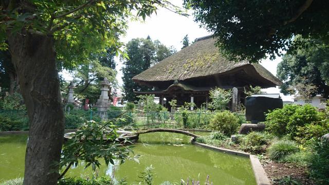 茨城県佐竹寺の写真