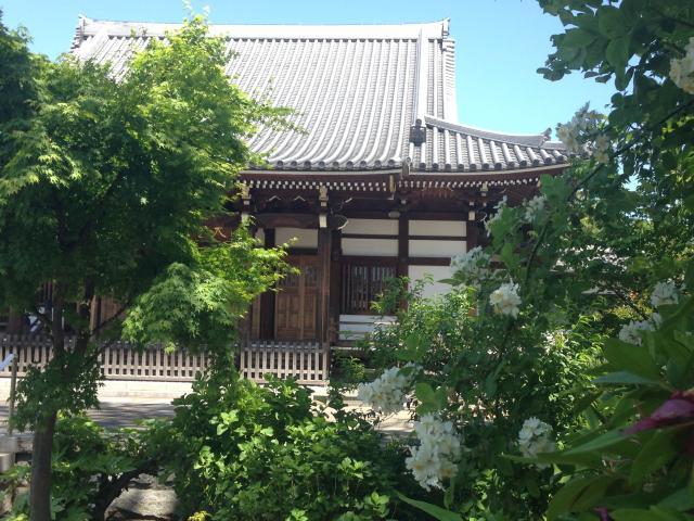 大雲寺の本殿