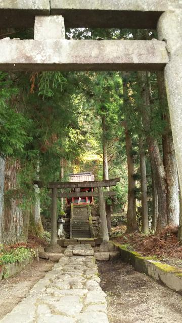 栃木県青龍神社の本殿