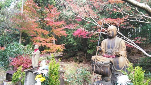 仁和寺の近くの神社お寺|大窪寺