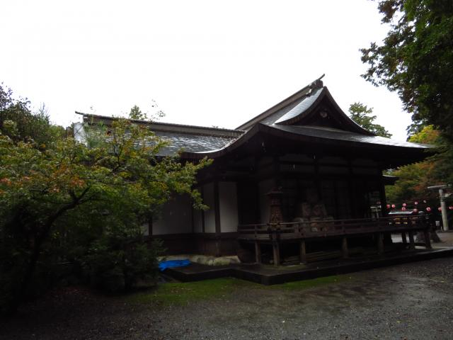 静岡県龍尾神社の本殿