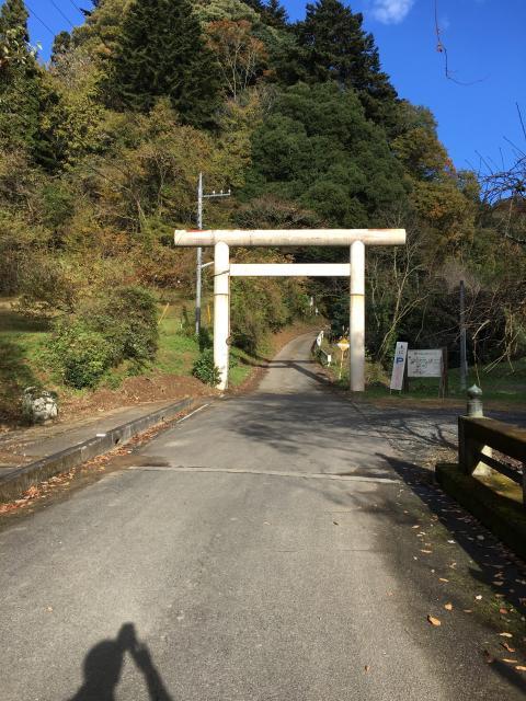 茨城県西金砂神社の鳥居