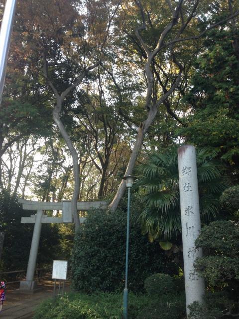 東京都喜多見氷川神社の鳥居