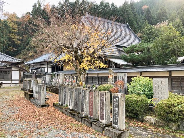 京都府成願寺(中風寺)の山門
